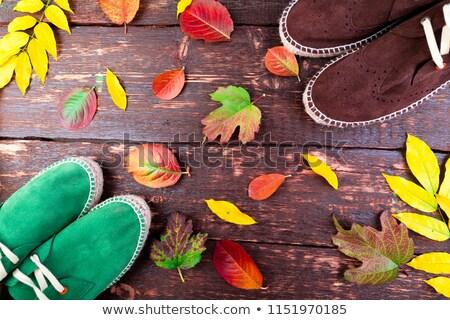sapatos · masculino · verde · amarelo · mulher · folha - foto stock © illia
