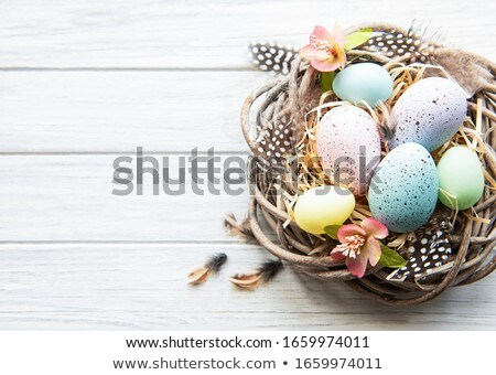 Easter eggs in nest  Stock photo © grafvision