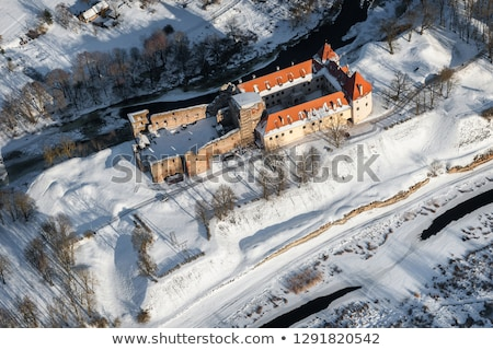 Bauska Castle, Latvia Stock photo © borisb17