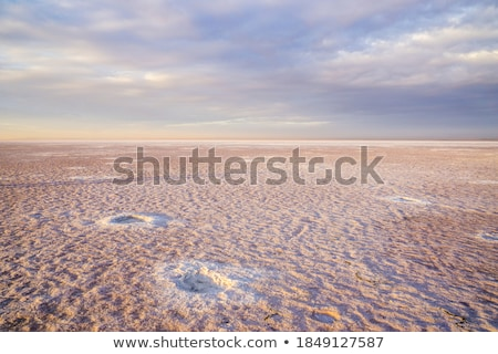 Beauty sunset on salty lake Stock photo © olira