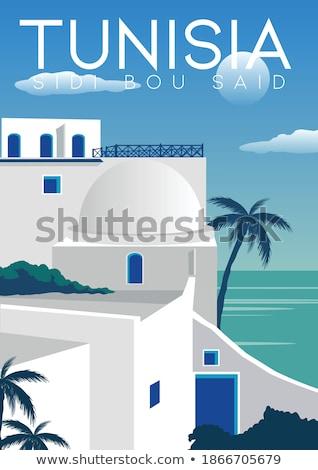 Tunísia país silhueta bandeira isolado branco Foto stock © evgeny89