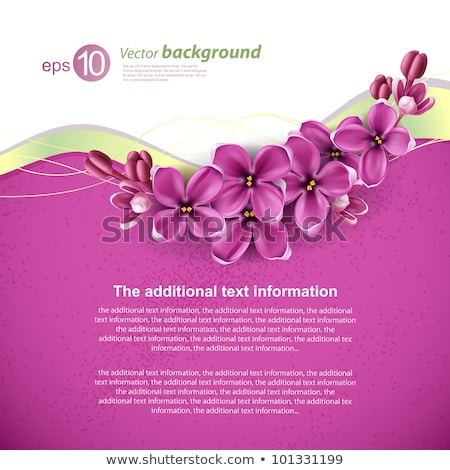 abstract floral back with pink flowers Stock photo © prill