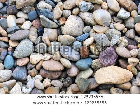 pedras · natureza · jardim · fundo · rocha · branco - foto stock © leungchopan