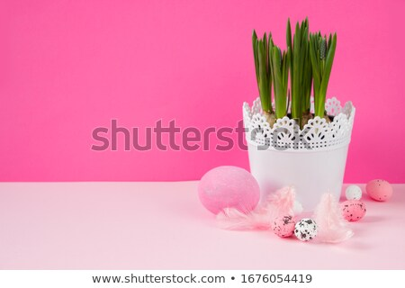 easter pink egg and feather Stock photo © neirfy