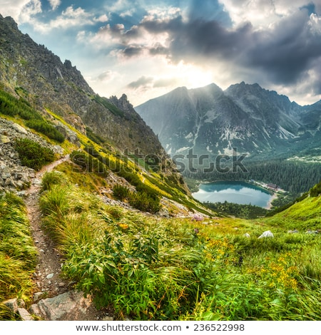 mountain landscape with pond and mountain chalet Stock photo © Kayco