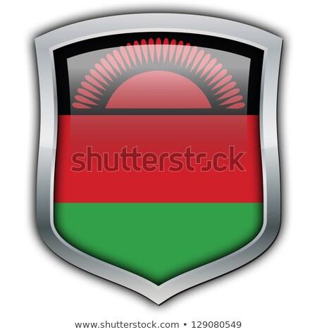 квадратный металл кнопки флаг Малави изолированный Сток-фото © MikhailMishchenko