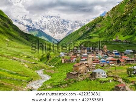 горные деревне Грузия лет пейзаж альпийский Сток-фото © Kotenko