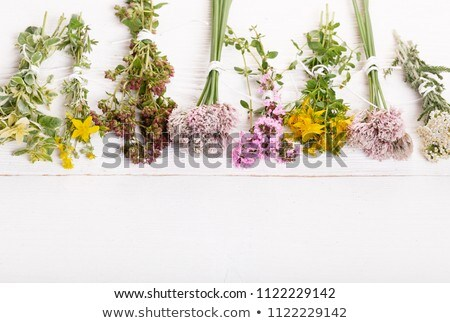 Bottles of homeopathic pills with dried herbs Stock photo © madeleine_steinbach