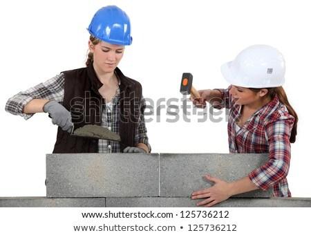 A team of tradeswomen Stock photo © photography33