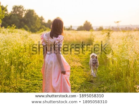 dog skirt running on the lawn stock photo © traza