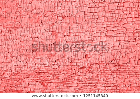 living coral grunge rough texture