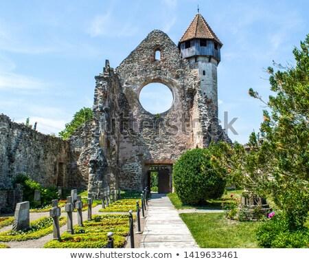 ruins of cistercian monastery stock photo © grafvision