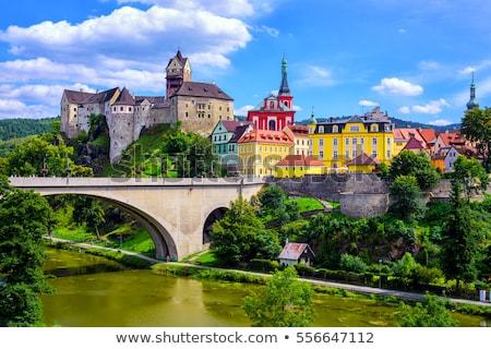 Kasteel Tsjechische Republiek gothic stijl 12 rock Stockfoto © borisb17