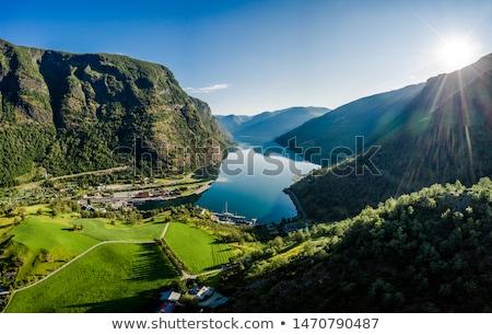 Stad dawn mooie natuur Noorwegen natuurlijke Stockfoto © cookelma