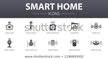 Smart home naaf assistent twee vrouwelijke Stockfoto © RAStudio