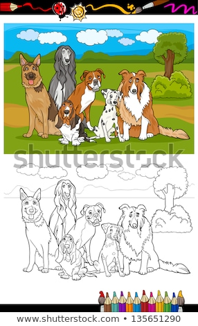 Komische honden puppies groep kleurboek pagina Stockfoto © izakowski