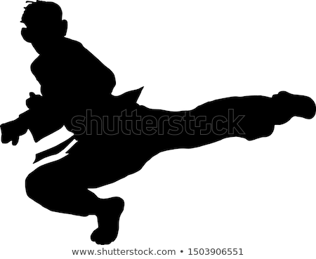 Karate boy kick a leg Stock photo © Paha_L