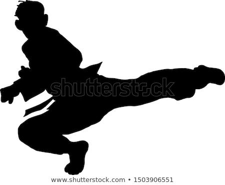 karate · chłopca · kopać · nogi · strony · dzieci - zdjęcia stock © Paha_L
