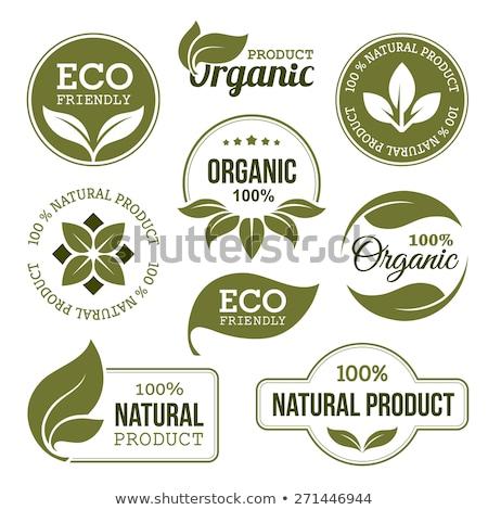 Eco Friendly Emblem Stock photo © adamson