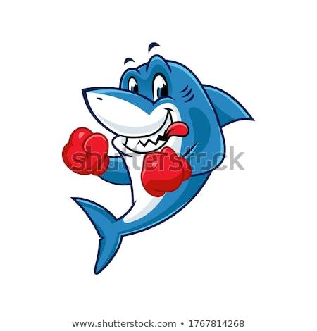 Cartoon rekina maskotka wektora obraz pływanie Zdjęcia stock © chromaco