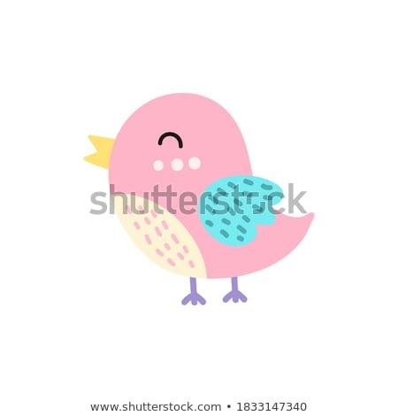 Sevimli bebek kuş yaratıcı dizayn sanat Stok fotoğraf © indiwarm