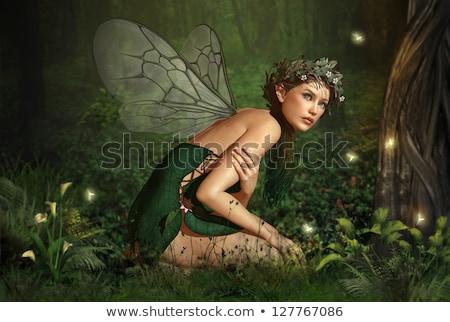 エルフ 少女 夏 木材 描いた 顔 ストックフォト © Aliftin