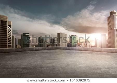 Tetők kilátás sok tengerpart ház fa Stock fotó © chrisbradshaw