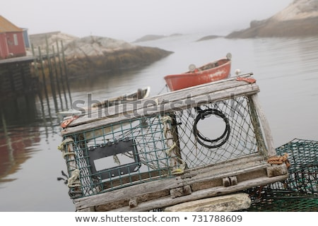 Alten Hummer Bild ruhend Ozean Industrie Stock foto © sumners