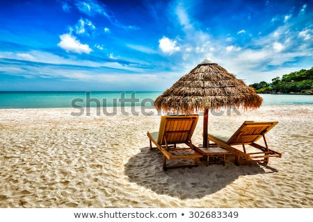 Stok fotoğraf: Tropikal · tatil · hamak · iki · palmiye · ağaçları
