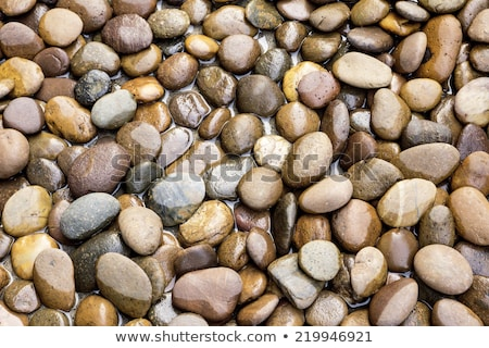 Water stream garden Stock photo © Ronen