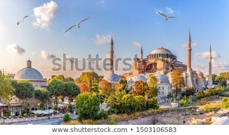 kupola · torony · mecset · Törökország · Isztambul · kilátás - stock fotó © sophie_mcaulay