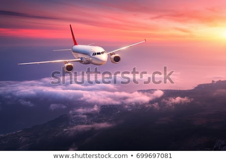 big plane in airport stock photo © ssuaphoto