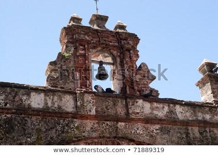 Vecchio san juan piccione parco noto Puerto Rico Foto d'archivio © ArenaCreative