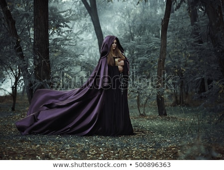 Beautiful witch in purple and black gothic Halloween costume   Stock photo © Elisanth