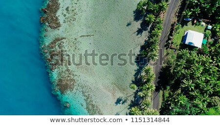 estrada · tahiti · principal · ilha · francês · polinésia - foto stock © danielbarquero