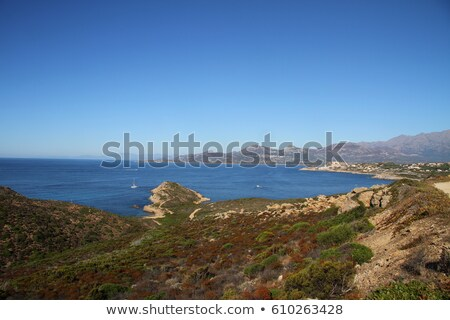View of the citadel and port of Calvi from across Calvi bay Stock photo © Joningall