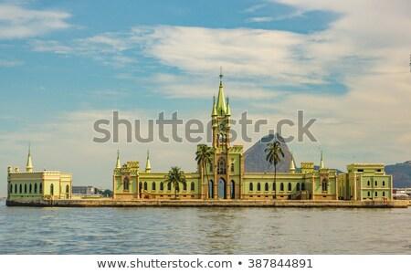 Fiscal isla Río de Janeiro Brasil pequeño verde Foto stock © xura