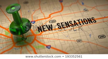 New Sensation  - Green Pushpin on a Map Background. Stock photo © tashatuvango