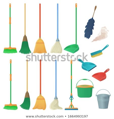 Objects - Feather Duster Stock photo © dgilder