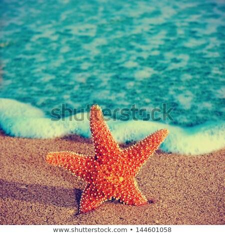 Tenger tengerpart retro szűrő hatás természet Stock fotó © HASLOO