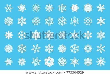 Abstract sneeuwvlok geïsoleerd witte ontwerp Stockfoto © lenapix