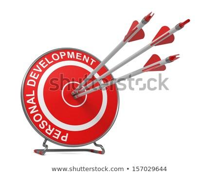 Personal Development - Arrows Hit in Red Target. Stock photo © tashatuvango