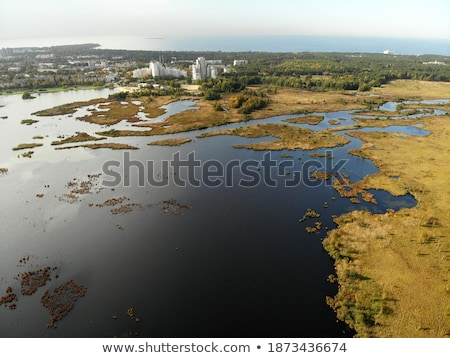 drone flying over lakes and swamp Stock photo © PixelsAway