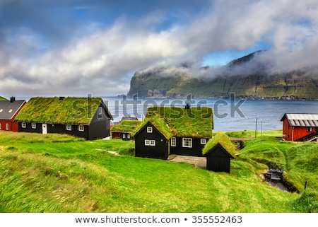 old scandinavian house with grass on the roof Stock photo © jarin13