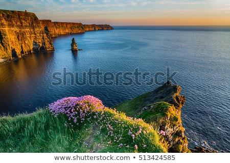 wild atlantic way cliff castle and beach stock photo © morrbyte