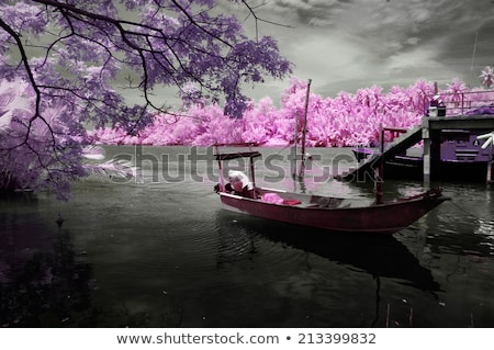 infrared photography landscape Stock photo © magann