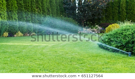Plastic Home Gardening Irrigation Sprinkler Stock photo © stevanovicigor