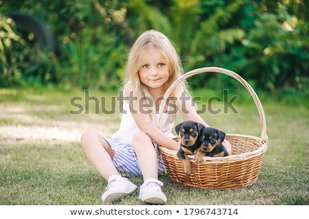 Petite fille teckel herbe main heureux nature Photo stock © Paha_L