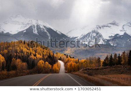 秋 · シーン · 黄色 · オレンジ · 木 · 表示 - ストックフォト © mroz
