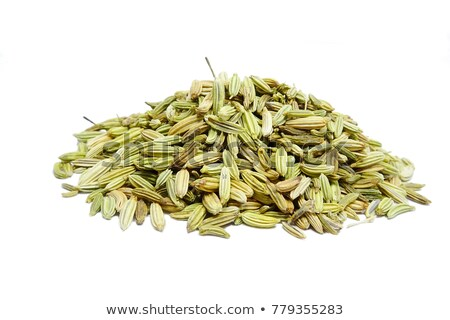 top view of organic fennel seed foeniculum vulgare stock photo © ziprashantzi